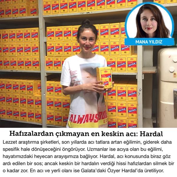 http://manayildiz.com/files/gimgs/th-49_mana_yildiz_ozyer_hardal_mustard_Hurriyet.jpg